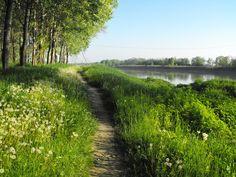 On the riverside of Po river Stagno Lombardo, Cremona, Lombardia, Italia | 15 min by bike - 30 min by foot - no car