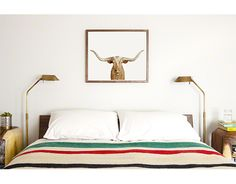 Animal print above bed? Longhorn Steer Close-up - The Animal Print Shop by Sharon Montrose