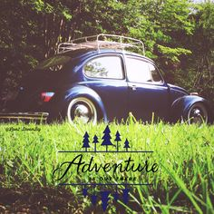 Adventure is out there while driving a #vwbug...  *Photo By: @Love2_DreamBig on instagram*