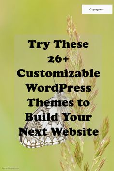 Try These 26+ Customizable WordPress Themes to Build Your Next Website - http://zigzagpress.com/themes/?ref=7f39f8317fbdb1988ef4c628eba02591