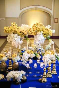 Royal Blue With Gold Yellow White Accents Photography By Kunioo Photo