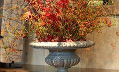 Best oogenlust images floral arrangements
