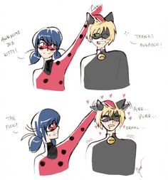 This is soooo. To be honest I've just wanted to draw drooling Chat. Meraculous Ladybug, Ladybug Comics, Ladybugs, Miraculous Wallpaper, Miraculous Ladybug Fan Art, Magical Girl, Funny Comics, Cute Drawings, Cute Pictures