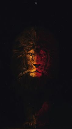 Lion Lion Galatasaray Wallpaper- Lion Aslan Galatasaray Duvar ka do Excellent yellow red painted Lion Lion Galatasaray Wallpaper- Lion Aslan Galatasaray Duvar ka do Excellent yellow red painted Sahar Lion wallpaper Lion Lion nbsp hellip backgrounds red Tier Wallpaper, Dark Wallpaper, Animal Wallpaper, Galaxy Wallpaper, Wallpaper Backgrounds, Iphone Wallpaper Sports, Wallpaper Ideas, Phone Backgrounds, Sports Wallpapers