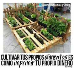 8 Excellent Pallet Garden Ideas For Your Backyard Diy Garden, Herb Garden, Garden Beds, Garden Projects, Garden Paths, Vegetable Garden, Garden Landscaping, Unique Gardens, Beautiful Gardens