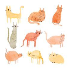 Cat Lady Illustration - Babasouk