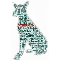 Doberman Cutout Magnet: These adorable dog magnets by Bumper Pet are made in the USA using a flexible yet durable magnetic material, making them perfect for the fridge or bumper. Each magnet is cut out in the shape of the breed and uses words specific to their individual characteristics.http://www.calendars.com/dbs/Doberman-Cutout-Magnet/Doberman-Cutout-Magnet/prod201400014819/?categoryId=cat10151=cat950002