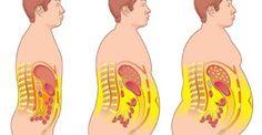 Diga adeus à gordura abdominal e desintoxique o corpo com esta receita   Cura pela Natureza