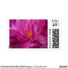 Perfectly Pink Dahlia USA Postage Stamp