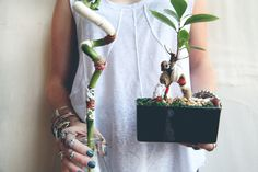 Yarn Bombed Plants - Free People Blog