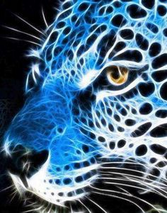 Grace Costa uploaded this image to 'blue'. See the album on Photobucket. Animal Paintings, Animal Drawings, Beautiful Cats, Animals Beautiful, Photo Animaliere, Image 3d, Fractal Art, Fractal Images, Types Of Art