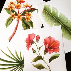 Tropical botanicals, by Joni Stringfield