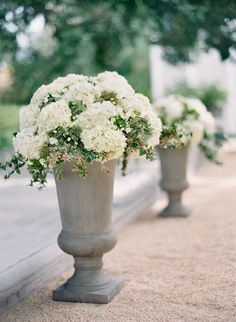 Are you thinking about having your wedding by the beach? Are you wondering the best beach wedding flowers to celebrate your union? Here are some of the best ideas for beach wedding flowers you should consider. Beach Wedding Flowers, Floral Wedding, Ceremony Decorations, Flower Decorations, Bouquet D'hortensia, Bouquets, Hydrangea Potted, Flower Pots, Floral Arrangements
