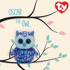 Oscar the Owl Beanie Boo! <3