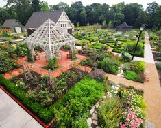 1000 images about community gardens on pinterest