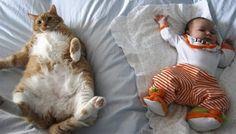 animali-bambini.jpg (510×290)