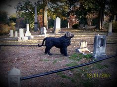 Hollywood Cemetery, Richmond, Va.... Hollywood Cemetery, Lose Something, Orchards, Places Ive Been, Marble, New Homes, War, Sweet, Pictures