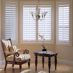 Shutters for playroom & breakfast area.  February Sale: 10% Off All Shutters on Blinds.com. Pictured: Norman Woodlore Plantation Shutters