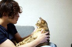 空前の猫ブームといわれる昨今。でも、猫の生活や行動パターンについては、意外と知ら - Yahoo!ニュース(サライ.jp)