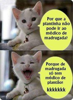 fotos imagens engracadas whatsapp facebook plantinha medico plantao