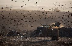 13 Mind-Blowing Images of Landfills Around the World Show the True Cost of Our Waste