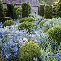 Famous for their beauty, the gardens at Hanham Court...