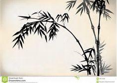 Bildergebnis für bambus zeichnen