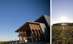 New MN winery already racking up serious awards. Beautiful, state of the art facility. Go!