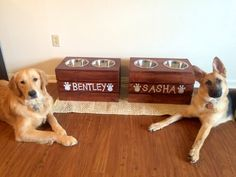 Customized Dog Bowl Stand by HanlonInnovations on Etsy