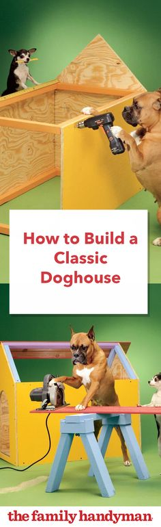 How to Build a Classic Doghouse
