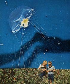 jelly fish ufo