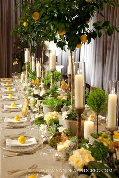 Reception table thème citrons - Beautiful table with lemons, roses and candlelight Wedding Centerpieces, Wedding Table, Wedding Decorations, Table Decorations, Wedding Themes, Wedding Reception, Lemon Centerpieces, Topiary Centerpieces, Wedding Venues