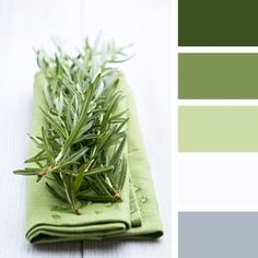 Colors | Combos | Palettes | Color Snap App | Sherwin-Williams | Secret Garden | Dill | Romaine | Extra White | Stardew
