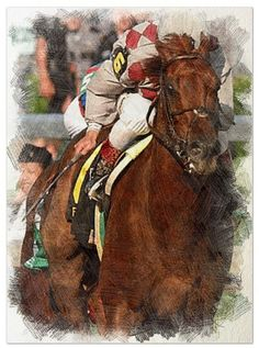 Funny Cide, Kentucky Derby winner, colour pencil sketch.