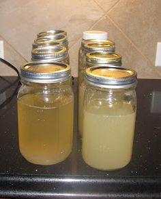 lemon water kefir?