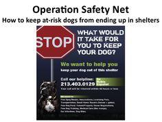 Operation Safety Net