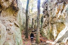 Hike to Penitentiary Hollow via Red Waterfront Trail
