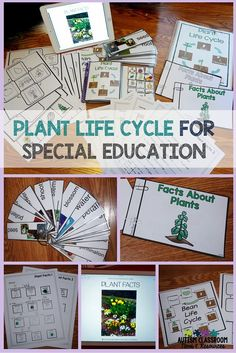 Differentiated materials for teaching the plant life cycle to students with moderate to mild disabilities.