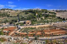 Holy Land Tour - Mount Of Olives