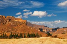 Between Clarens and ficksburg - Google Search Eternal Sunshine, Free State, Pictures To Paint, So Little Time, Monument Valley, South Africa, Art Projects, My Photos, Landscapes