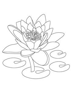 Lotus Flower Coloring Pages Printable | Flower Coloring Pages ...
