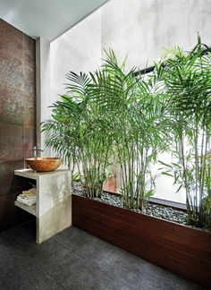 Everyone needs a little plant life in their bathroom! This bamboo stock display works perfectly in this minimalist bathroom design.