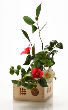 Ikebana by Hiroki MAENO, Japan// Buena idea para nuestro jardín...