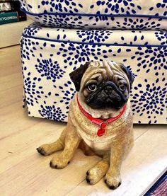 Pug Dog Heart Shape Chrome Plated Bag Hanger in Gift Box