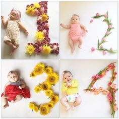 creative baby photos flowers