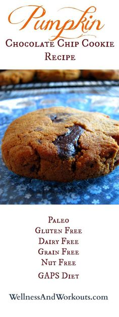 Pumpkin Chocolate Chip Cookie Recipe with lots of coconut goodness! Gluten free, Paleo, Grain Free, Dairy Free, GAPS Diet & Nut Free. These taste AMAZING!