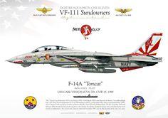 "UNITED STATES NAVY FIGHTER SQUADRON ONE ELEVEN (VF-111) ""Sundowners""USS Carl Vinson (CVN-70), CVW-15, 1989"