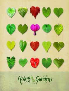 Hearts in the Gardens poster - moss green version.