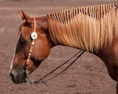 When horses do braids