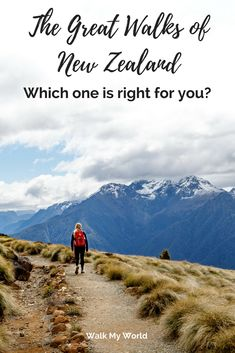 With nine to choose from you want to make sure you pick the right Great Walk of New Zealand for you. Having recently walked all nine, we have you covered and have broken them down into categories to help you decide which one is for you. New Zealand Beach, Visit New Zealand, Travel Guides, Travel Tips, Travel Destinations, Budget Travel, Kia Ora, New Zealand Travel Guide, Great Walks